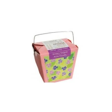 Boîte à jardin Pensées Comestibles - Mano Verde Mano Verde