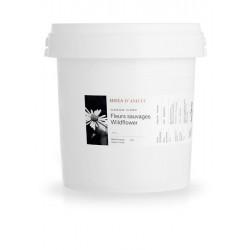 Miel brut Fleurs sauvages 3kg - Miels D'Anicet