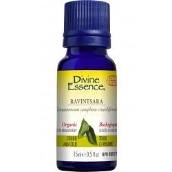 Huile Essentielle de Ravintsara Biologique - Divine Essence Divine Essence
