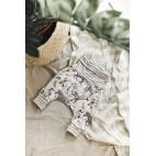 Harem Little Zebras Evolutionary Pants - Little Yogi