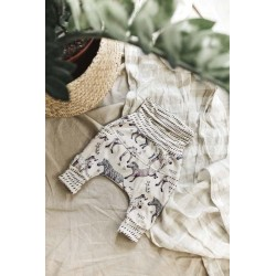Harem Little Zebras Evolutionary Pants - Little Yogi
