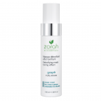 Detoxifying Mask Toning Effect GASPÉ - Zorah