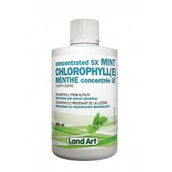 Concentré de Chlorophylle (5x) - Land Art Land Art