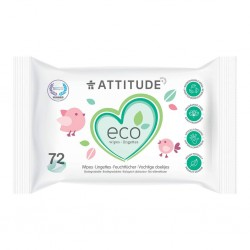 Biodegradable Wipes (72)